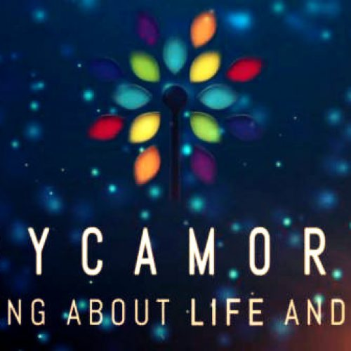 Sycamore: Thinking about Life and Faith
