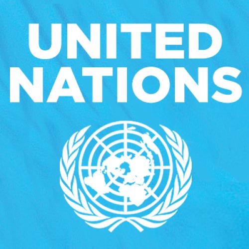 United Nations Online Volunteering Service